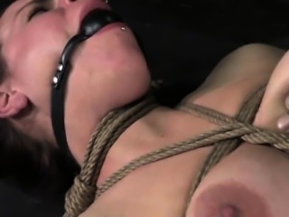 Boxtied sub being whipped and humilliated